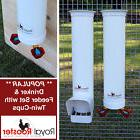 ROYAL ROOSTER Chicken / Poultry Coop - Waterer / Drinker & F